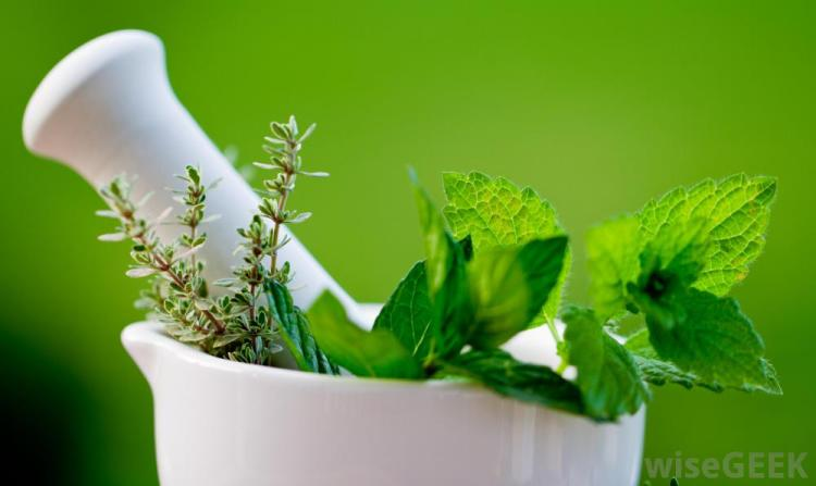 herbs-in-white-bowl-against-green-background.jpg